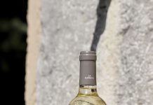 Pourquoi vin rouge ou vin blanc ?